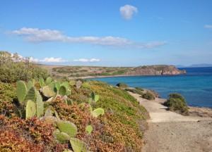 Bike Sardegna: Sant'Antiocho