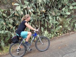 Bike Sardegna: Barisardo