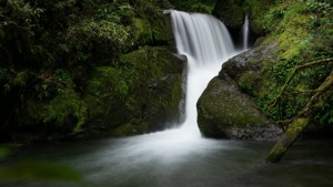 Trogon Lodge Pferdetrecking und Wasserfalltour Costa Rica