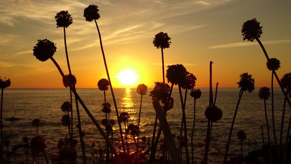 Giro dell'isola di Ustica