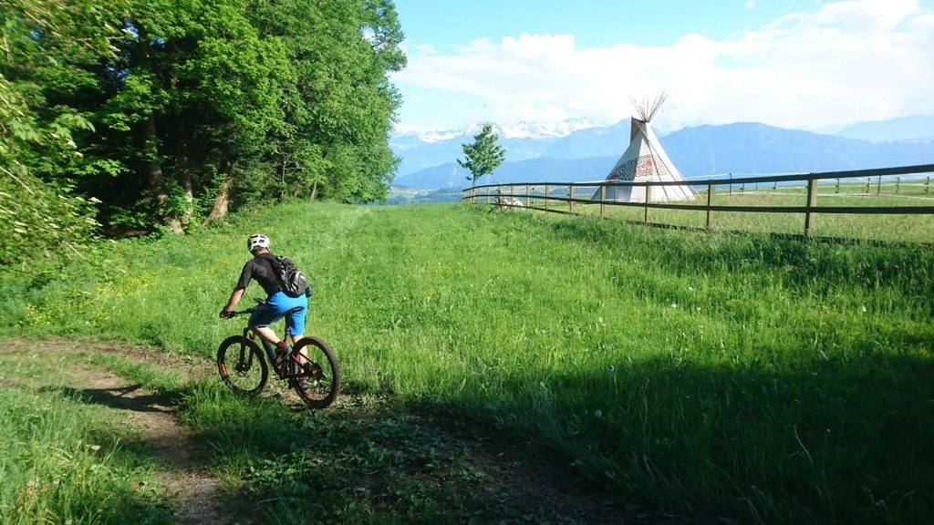 Single Trails im Meggerwald