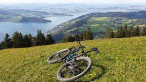 Höhronen – Wildspitz – Michaelskreuz D23 Bike