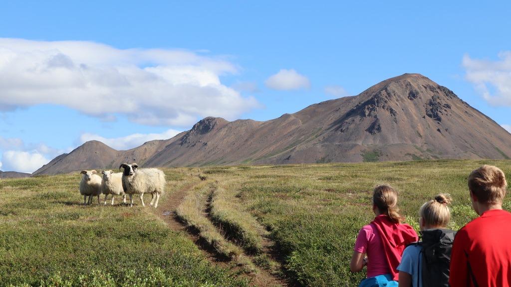 Island: Mt. Hlíðarfjall
